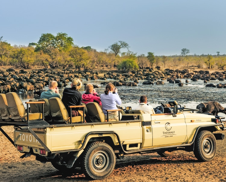 National-Park-Safaris
